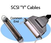 """SCSI """"Y"""" Cables"""