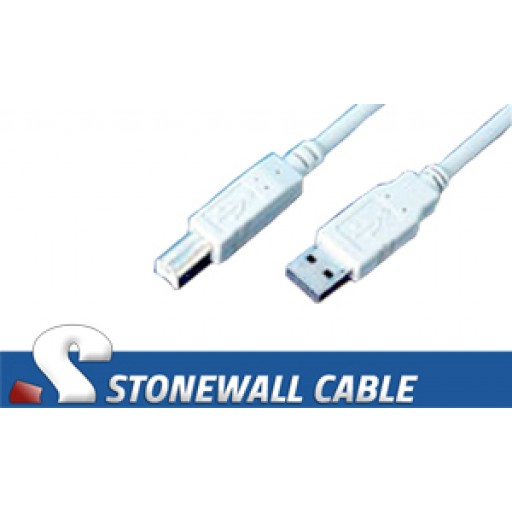 USB AB Cable 10'