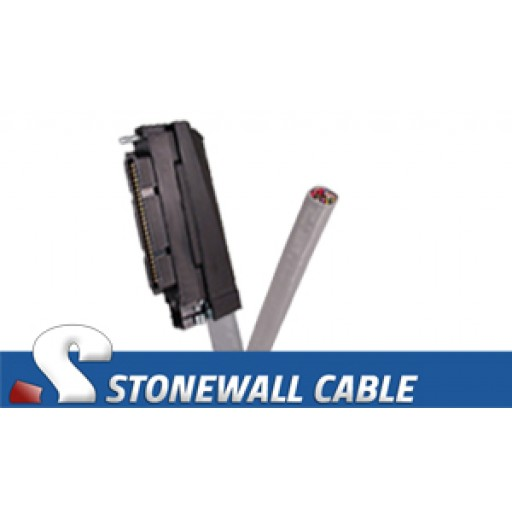RJ21 Cable - Category 5e Telco 50 Female / Blunt